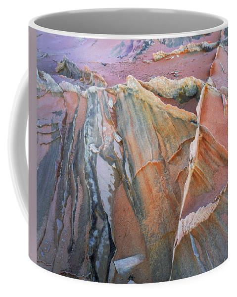 Arizona Coffee Mug featuring the photograph Wind Blown Sand Texture by Leland D Howard