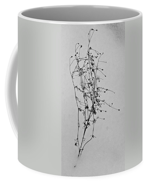 Windblown Coffee Mug featuring the photograph Windblown In The Snow by Douglas Barnett