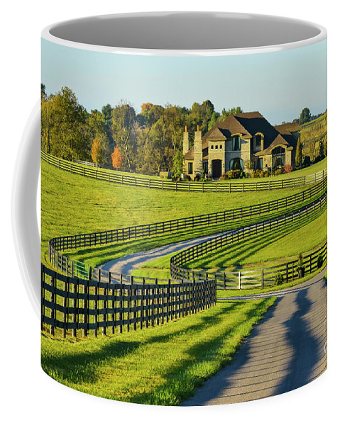Lexington Coffee Mug featuring the photograph Winding Entrance by Bob Phillips