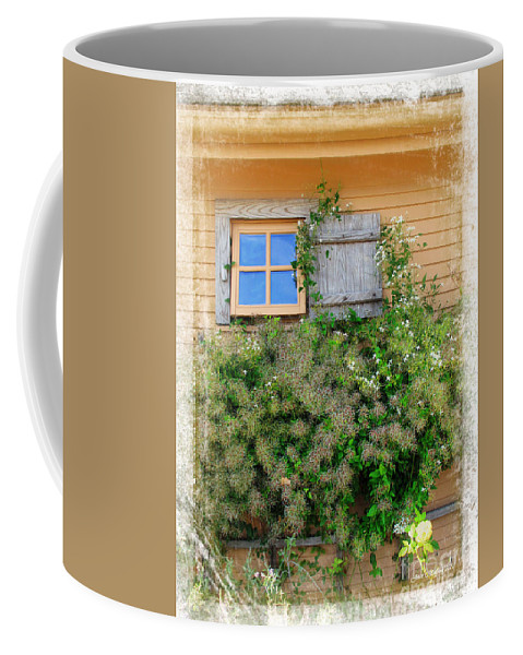 Botanical Coffee Mug featuring the photograph Window In Plymouth by Joan Minchak