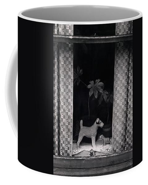 Photograph Coffee Mug featuring the photograph Window Scene by Charles Stuart
