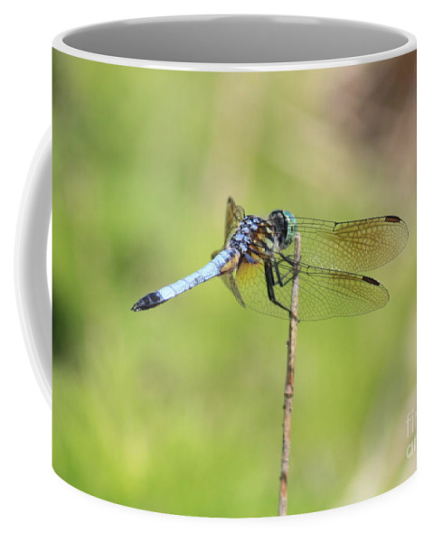 Dragonfly Coffee Mug featuring the photograph Windswept Dragonfly by Carol Groenen