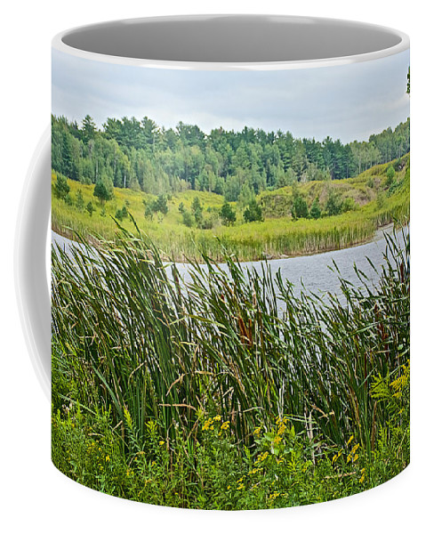 Windy Day In Campground In Saginaw Coffee Mug featuring the photograph Windy Day In Campground In Saginaw-minnesota by Ruth Hager