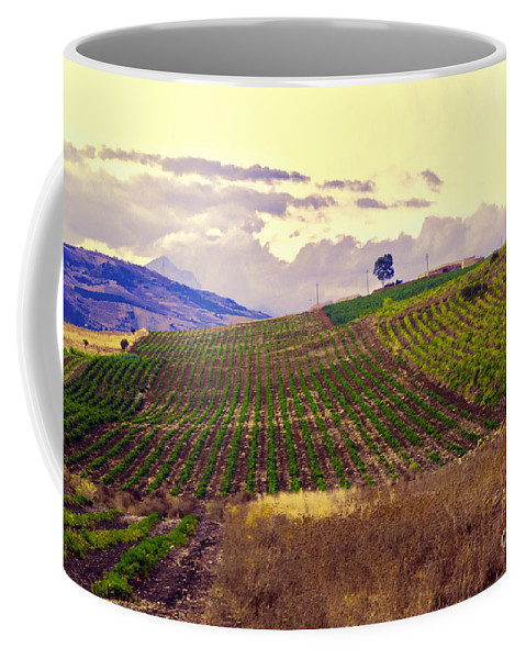 Wine Coffee Mug featuring the photograph Wine Vineyard In Sicily by Madeline Ellis