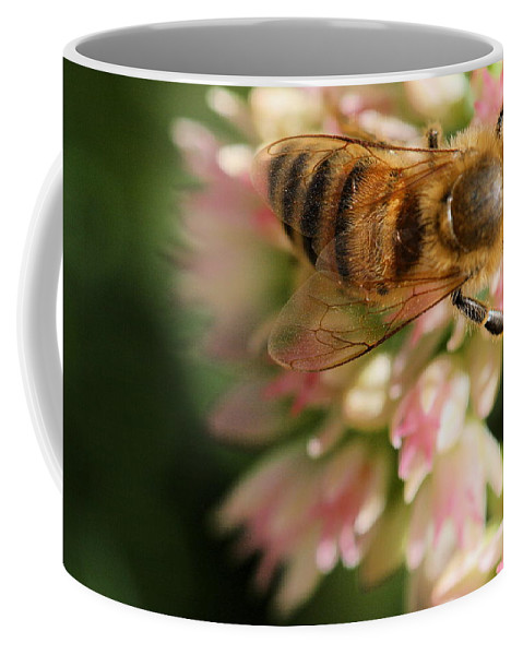 Bee Coffee Mug featuring the photograph Wing And A Prayer by Angela Rath