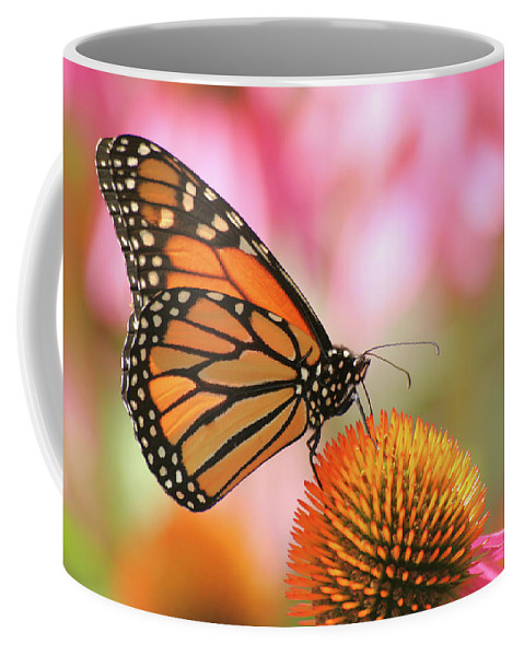 Butterfly Coffee Mug featuring the photograph Winged Beauty by Doris Potter