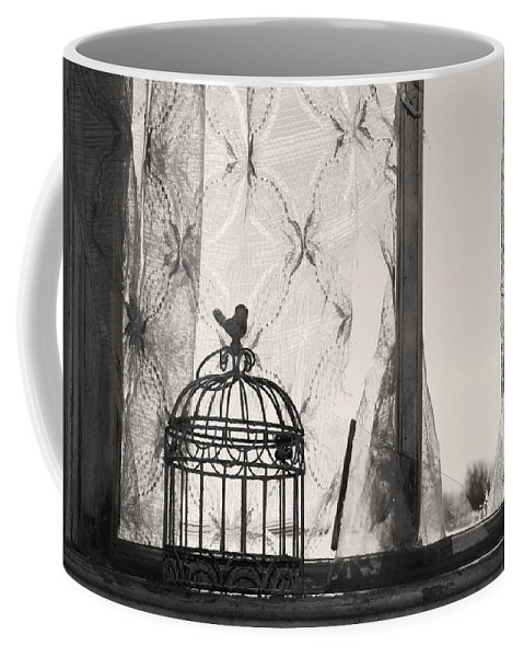 Landscapes Coffee Mug featuring the photograph Wings Remember by The Artist Project