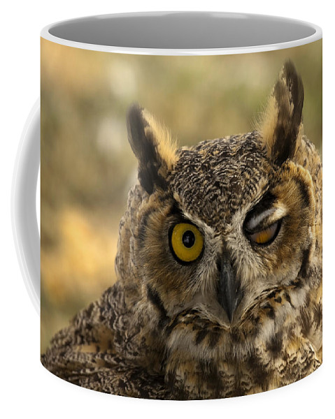 Owl Coffee Mug featuring the photograph Wink by Mike Dawson