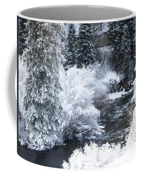 Trees Coffee Mug featuring the photograph Winter Along The Creek by DeeLon Merritt