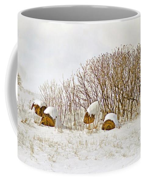 Hay Coffee Mug featuring the photograph Winter Beauty by Deborah Benoit