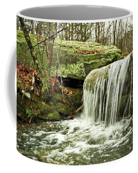 Winter Coffee Mug featuring the photograph Winter Beauty by Ty Shults