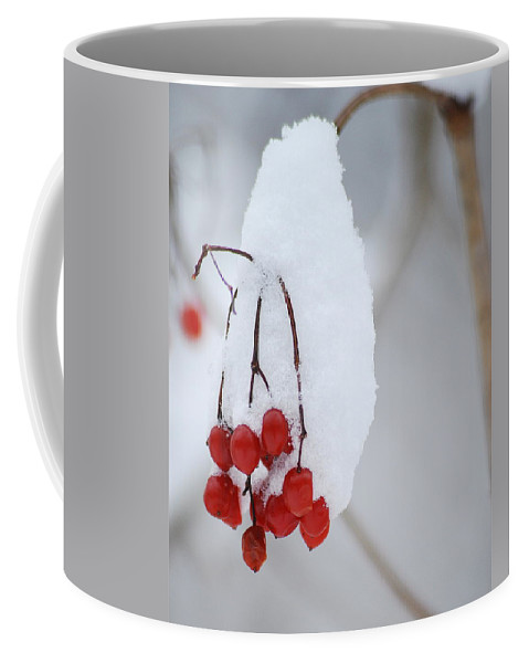 Nature Coffee Mug featuring the photograph Winter Berries by Michael Peychich