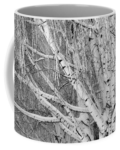 Birch Trees Coffee Mug featuring the photograph Icy Winter Birch Tree by Carol Groenen