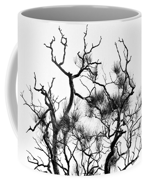 Photography Coffee Mug featuring the photograph Winter... Black And White by Kaye Menner