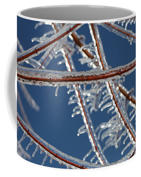 Winter Coffee Mug featuring the photograph Winter Blue by Nadine Rippelmeyer