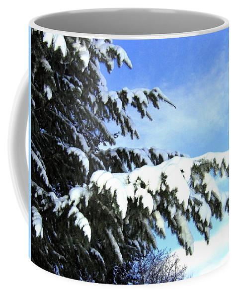 Winter Coffee Mug featuring the photograph Winter Boughs by Will Borden