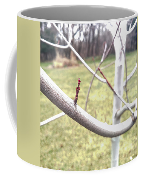 Autumn Blaze Maple Coffee Mug featuring the photograph Winter Bud by Jennifer Kohler