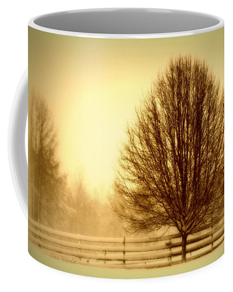 Winter Coffee Mug featuring the photograph Winter Calm by Tina Meador