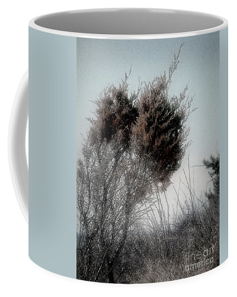 Beach Coffee Mug featuring the painting Winter Cedar by RC DeWinter