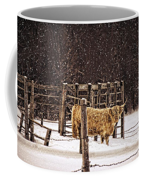 Winter Coffee Mug featuring the photograph Winter Coat by LuAnn Griffin