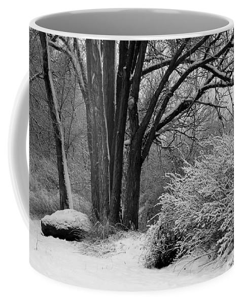 Snowy Landscape Coffee Mug featuring the photograph Winter Day - Black And White by Carol Groenen