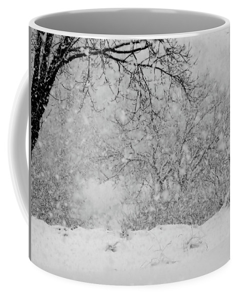 Snowfall Coffee Mug featuring the photograph Winter Dream by Mary Wolf