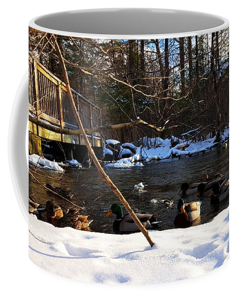 Duck Coffee Mug featuring the photograph Winter Ducks by Bill Tatarnic