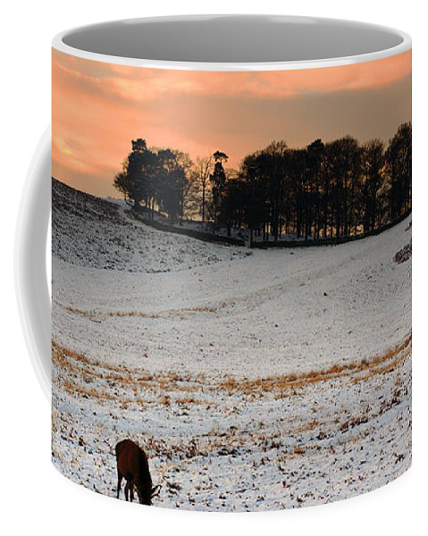 Winter Coffee Mug featuring the photograph Winter Dusk At Bradgate Park by Linsey Williams