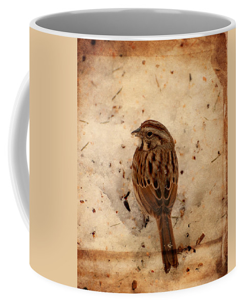 Sparrows Coffee Mug featuring the photograph Winter Feast I - Textured by Angie Tirado