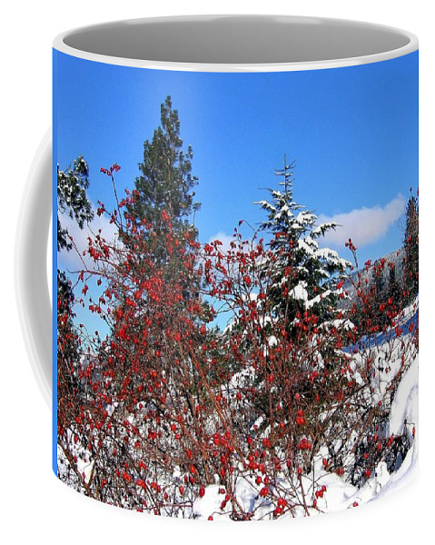 Landscape Coffee Mug featuring the photograph Winter Haven by Will Borden
