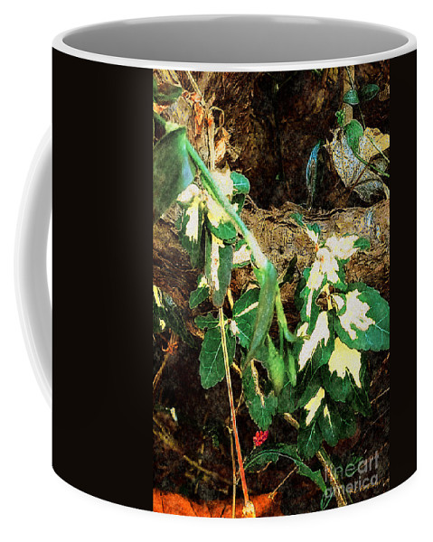 Autumn Coffee Mug featuring the painting Winter Hideout by RC DeWinter