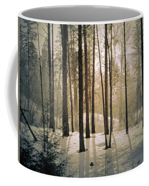 Winter Coffee Mug featuring the photograph Winter Light by Tara Turner
