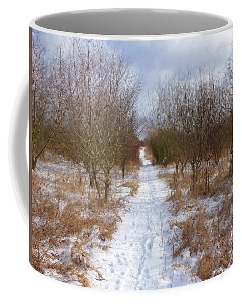 Background Coffee Mug featuring the photograph Winter by Miroslav Nemecek