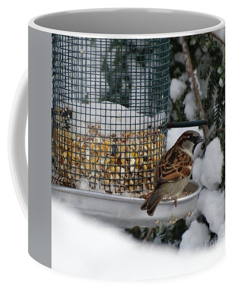 Birds Coffee Mug featuring the photograph Winter Mornings by Gina Sullivan
