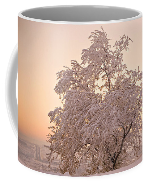 Winter Coffee Mug featuring the photograph Winter Sunset by Marilyn Hunt