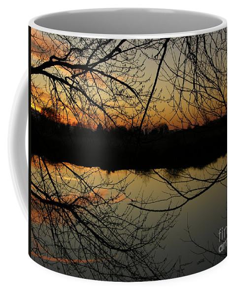 Sunset Coffee Mug featuring the photograph Winter Sunset Reflection by Carol Groenen