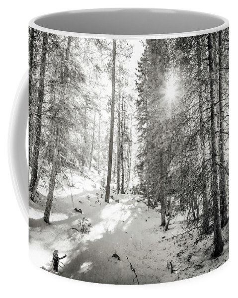 Backcountry Coffee Mug featuring the photograph Winter Sunshine Forest Shades Of Gray by James BO Insogna