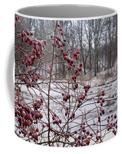Winter Coffee Mug featuring the photograph Winter Time Frozen Fruit by Douglas Barnett
