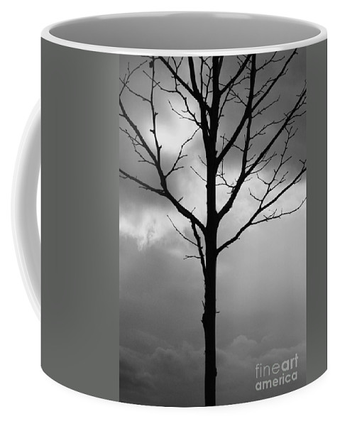 Winter Tree Coffee Mug featuring the photograph Winter Tree by Carol Groenen