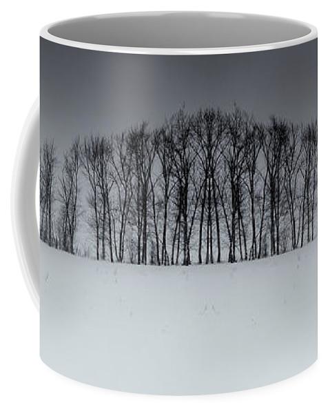 Snow Coffee Mug featuring the photograph Winter Tree Symmetry Long Horizontal by John Williams
