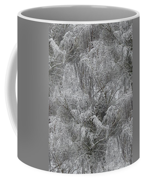 Winter Coffee Mug featuring the photograph Winter Trees by Tim Allen