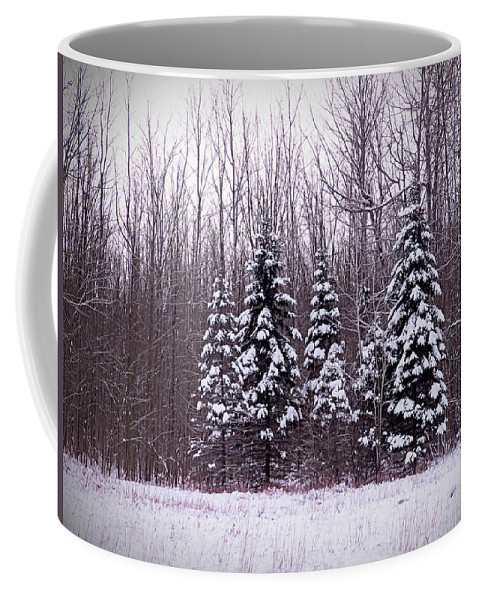 Winter Coffee Mug featuring the photograph Winter White Magic by Leslie Montgomery