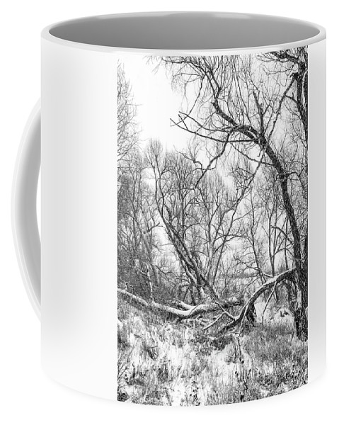 Steve Harrington Coffee Mug featuring the photograph Winter Woods On A Stormy Day 2 Bw by Steve Harrington