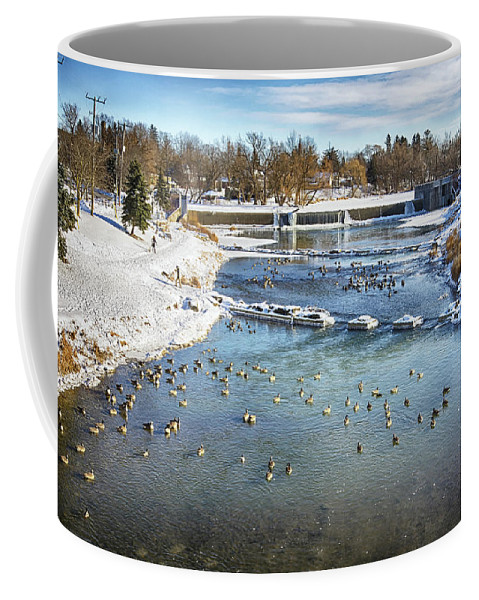 Geese Coffee Mug featuring the photograph Wintering Geese by Tatiana Travelways