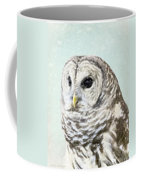 Barred Owl Coffee Mug featuring the photograph Winters Owl, Barred Hoot Owl Winter Snow Falling by Melissa Bittinger