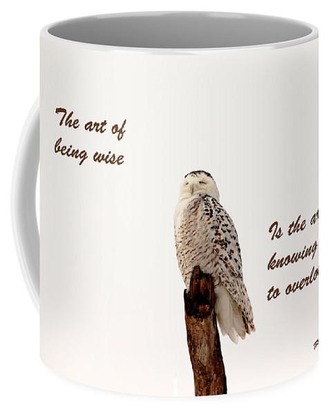 Owl Coffee Mug featuring the photograph Wisdom by Debbie Oppermann