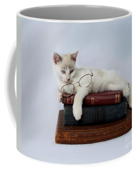 Cat Coffee Mug featuring the photograph Wisdom by Jai Johnson