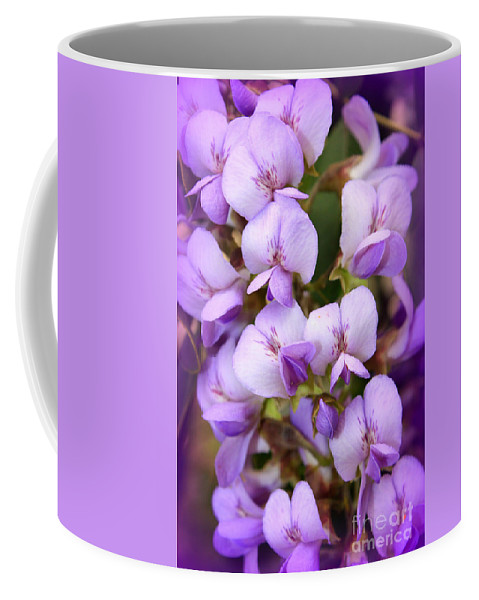Purple Coffee Mug featuring the photograph Wisteria Blossoms by Carol Groenen