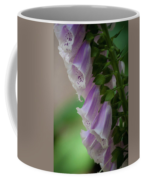 Purple Coffee Mug featuring the photograph With Bells On by Trish Tritz