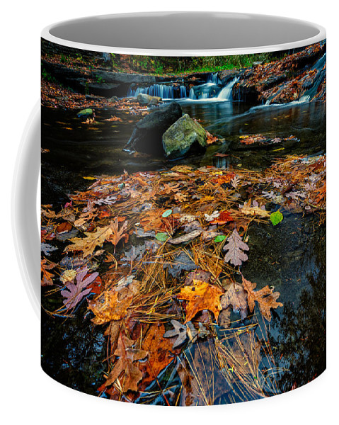 Creek Coffee Mug featuring the photograph Wolf Creek by Rick Berk